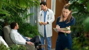 Grey's Anatomy: 15×18