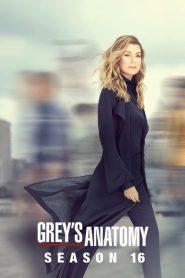 Grey's Anatomy: Season 16